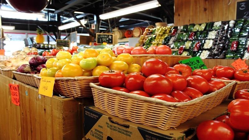 с чего начать овощной бизнес