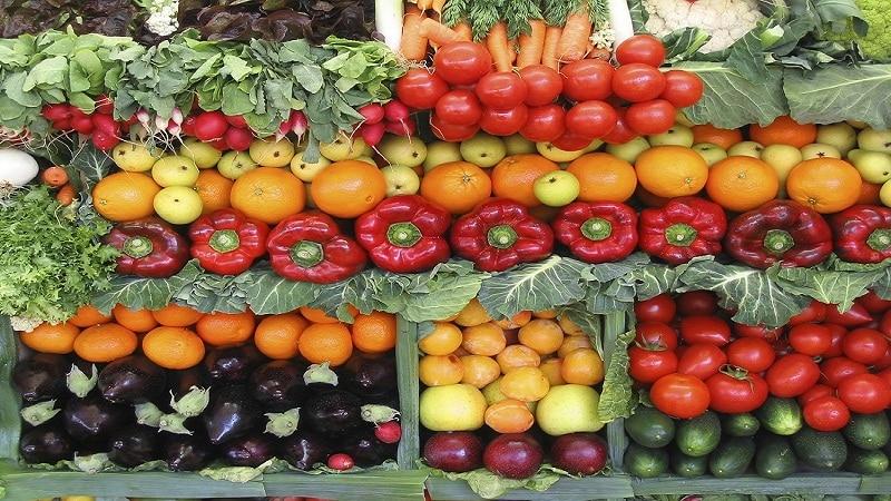 бизнес-план фрукты овощи