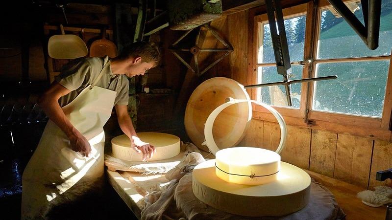 мини цех производства сыра как бизнес