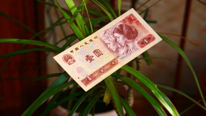с чего начать бизнес с Китаем на перепродаже