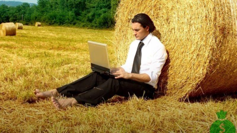 бизнес план для сельской местности