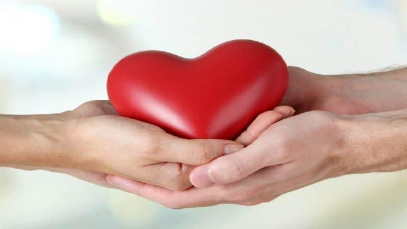 как создать благотворительный фонд с нуля физическому лицу