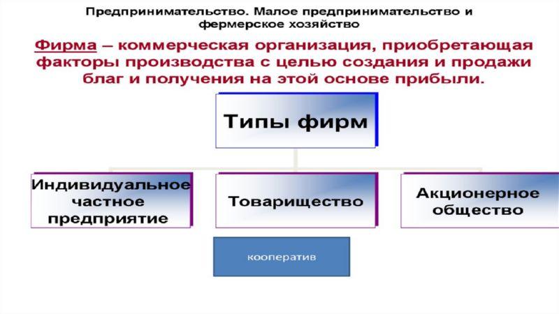 Коммерческие организации виды функции