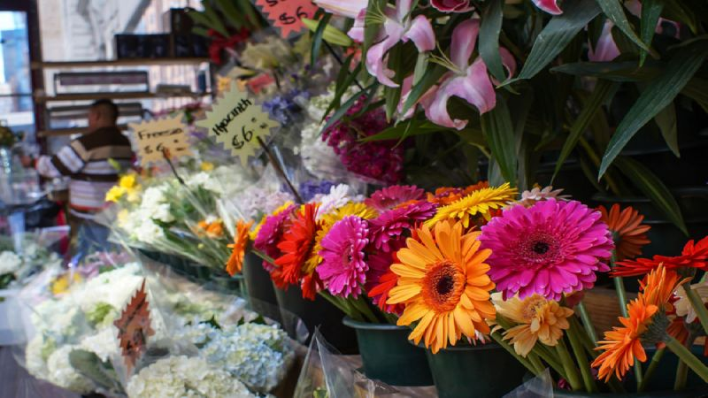 как открыть цветочный магазин с нуля бизнес-план