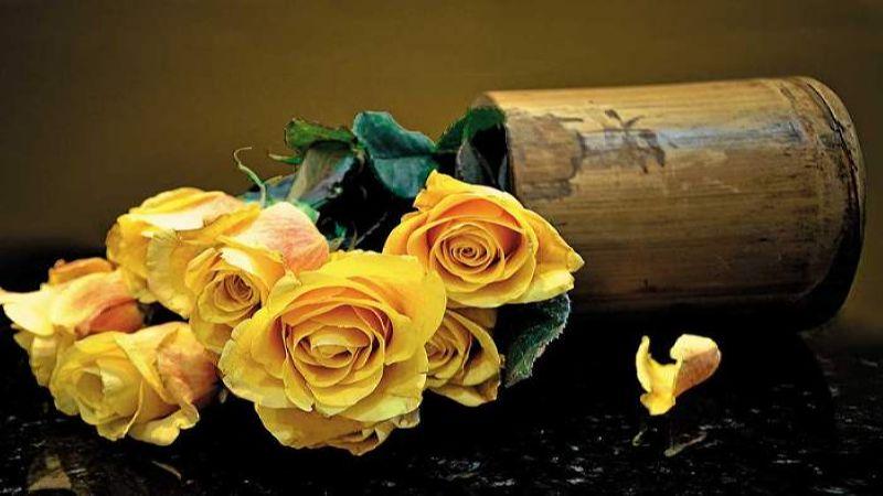 бизнес-план цветочного магазина с расчетами