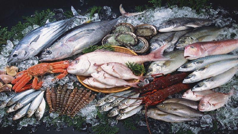 как открыть рыболовный магазин с нуля