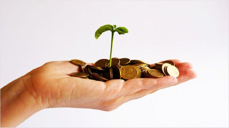 выручка и прибыль разница