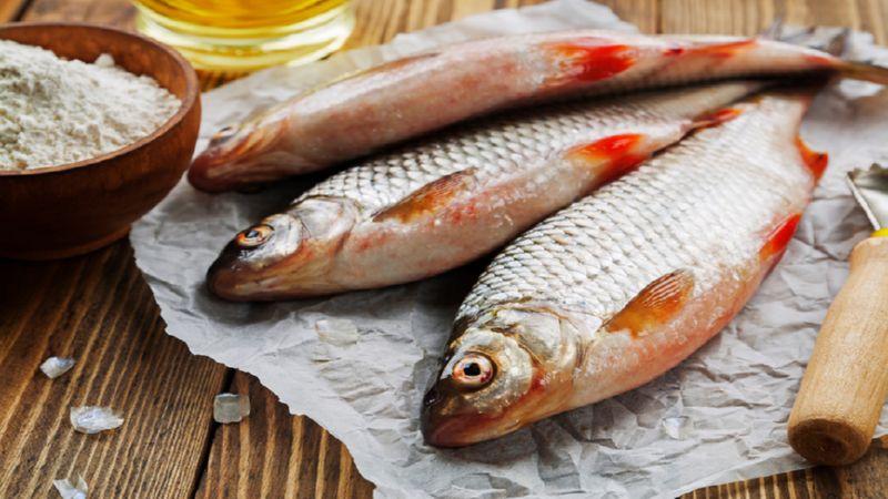 рыбное хозяйство это