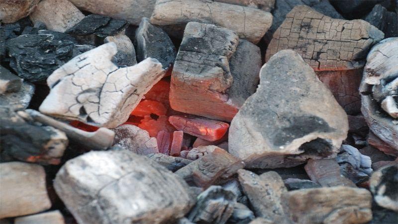 бизнес-план производства древесного угля