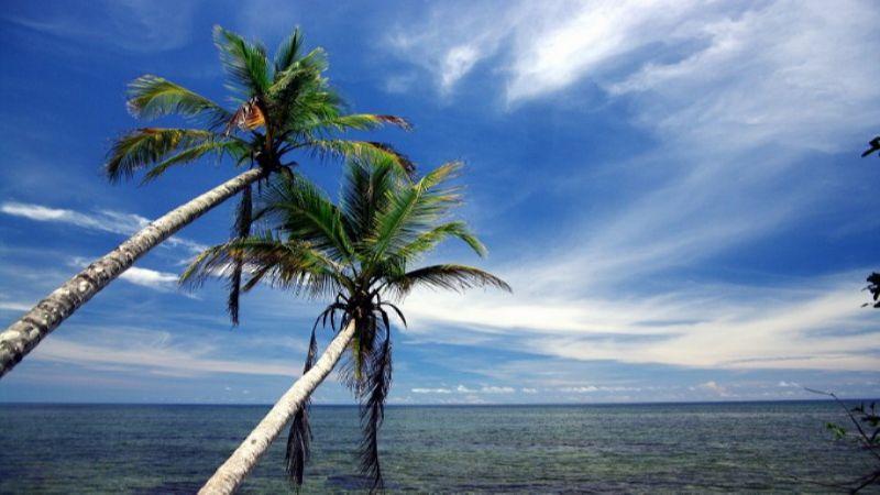 образец заявления на отпуск без содержания